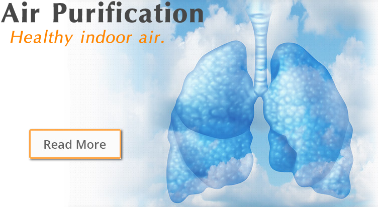 air purifying bay area service company
